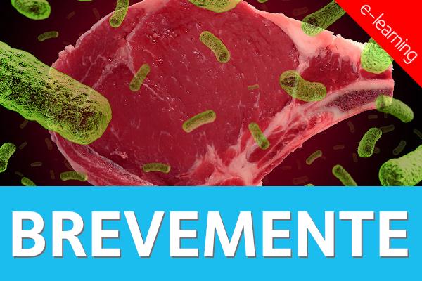 Boas Práticas de Higiene e Segurança Alimentar